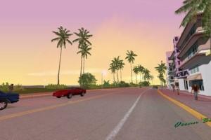 新的棕榈树和天空补丁